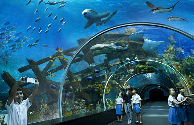 The Oceanarium «Ailand»